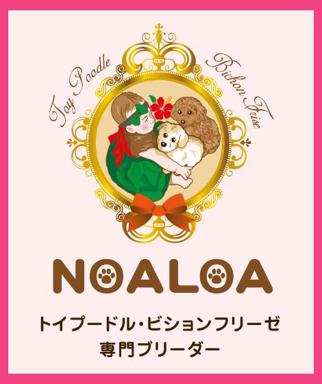 NOALOA
